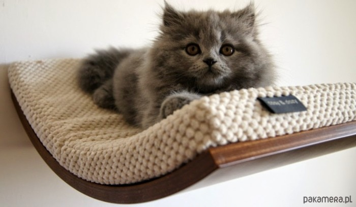 Półka legowisko dla kota CHILL projektu Cosy and Dozy