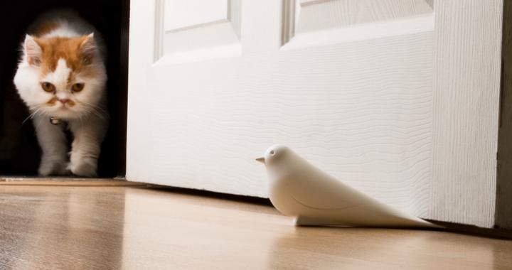 stoper ptak do drzwi