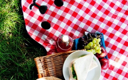 koc piknikowy miś 2