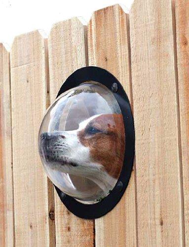 Okno w płocie dla psa PetPeek