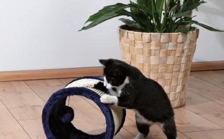 drapak dla kota rolka