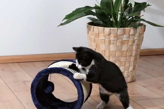 Toczący się drapak dla kota marki Trixie