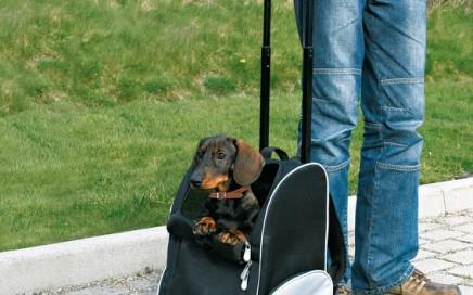 walizka i plecak na psa 2w1