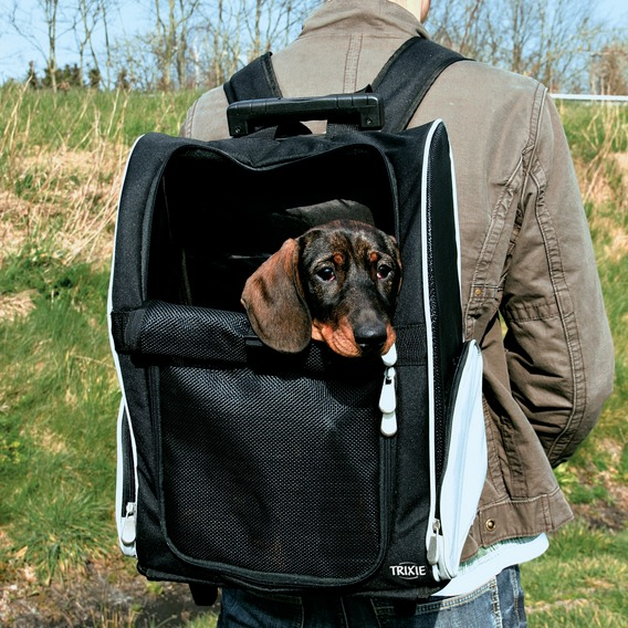 Walizka i plecak na psa Trixie