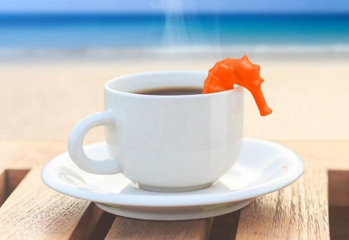 zaparzaczka-do-herbaty-konik-morski-fred