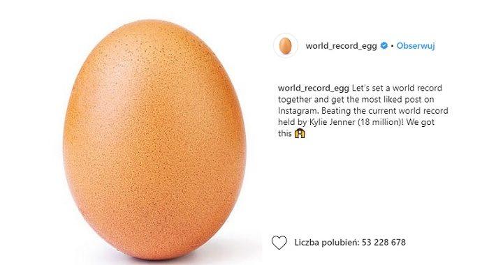 jajko instagram