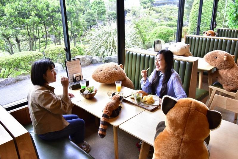 Japońskie Zoo, aby wspierać dystans społeczny, ustawia pluszowe kapibary w restauracji