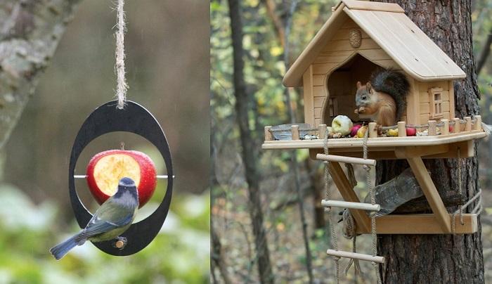 10+ unikalnych karmników dla ptaków i wiewiórek