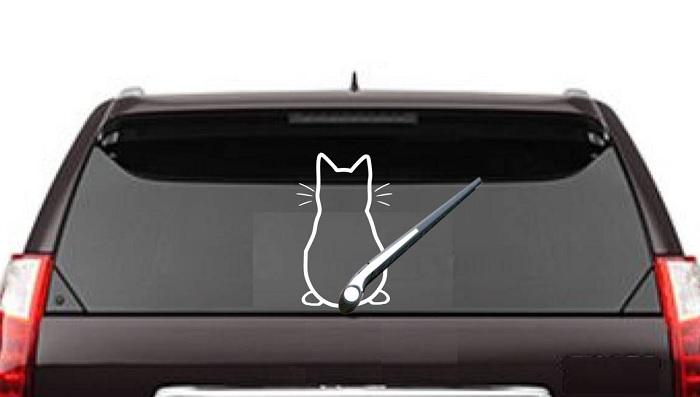 kot wycieraczka
