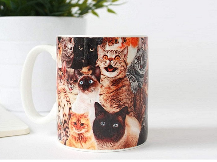 kubek caly w koty