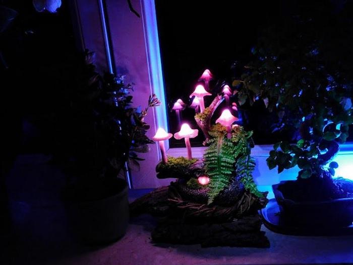 lampka grzybki