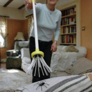 lapacz pająków