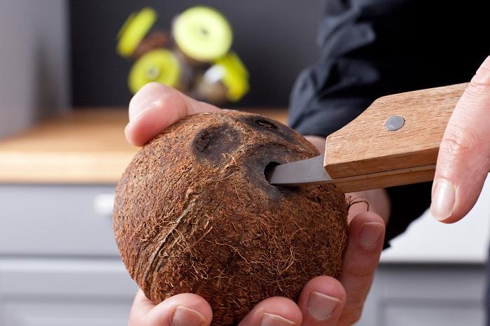 noz do kokosa1