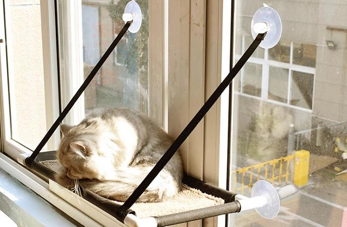 półka na kota okno 2