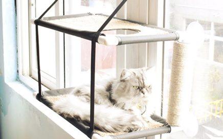 półka na kota okno 3