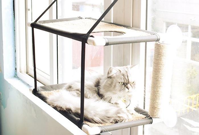 Półka dla kota wieszana na oknie