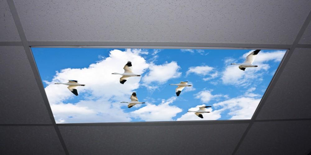 panel niebo 3