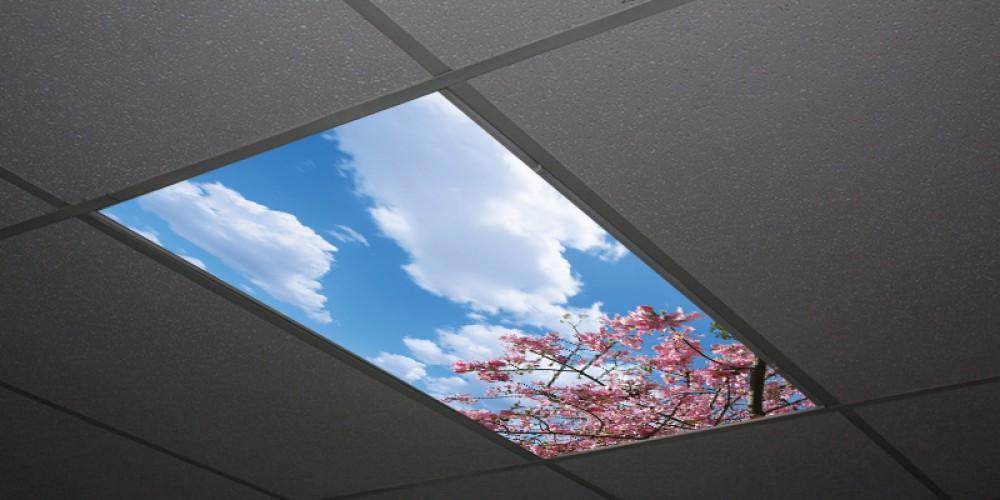 panel niebo