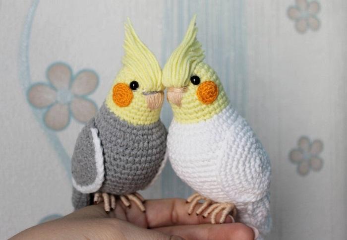 papuzki 1