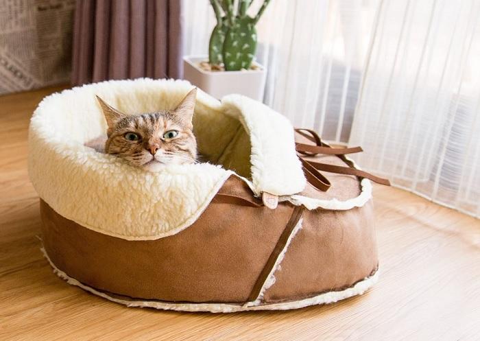 Posłanie dla kota mokasyn