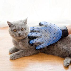 rekawica do czesania kota
