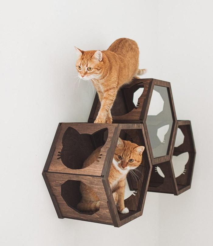 scienny mebel dla kota