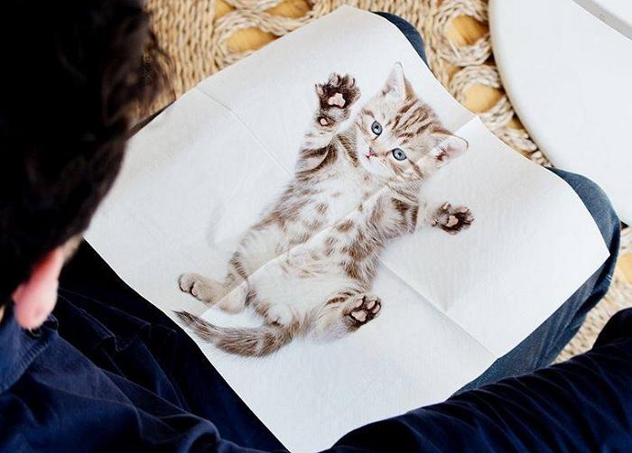 Serwetki z kotami