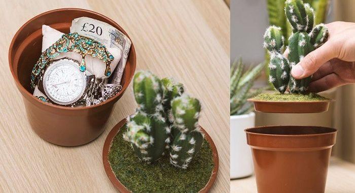 skrytka kaktus