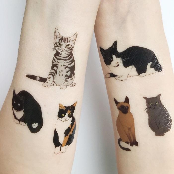 tatuaze koty