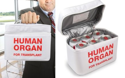 torba na lunch human organ