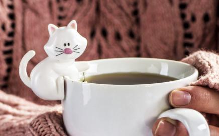 zaparzacz do herbaty z kotem