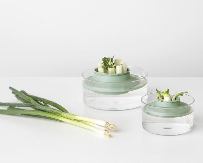 zestaw do uprawy ziol i warzyw